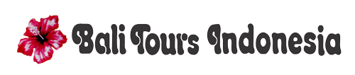 Tours & Travel Agent